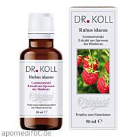 Gemmoextrakt Himbeere, 50 ML, Dr. Koll Biopharm GmbH