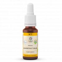 BACHBLUETE 7 CHEST BUD BIO, 20 ML, Lemon Pharma GmbH & Co. KG