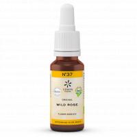 BACHBLUETE 37 WILD ROS BIO, 20 ML, Lemon Pharma GmbH & Co. KG