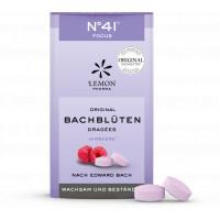 Bachblüten No. 41 Konzentration Dragees Dr. Bach, 21 G, Lemon Pharma GmbH & Co. KG