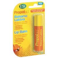 Lippenstift Lippenbalsam mit Propolis + Aloe, 5.7 G, Groß GmbH