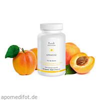 Aprikose - Für die Sonne, 60 ST, Plantavis GmbH