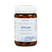 OPC240 plus Acerola - 240mg reines OPC, 60 ST, Bioprophyl GmbH