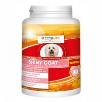 bogavital SHINY COAT SUPPORT Hund, 120 ST, Werner Schmidt Pharma GmbH