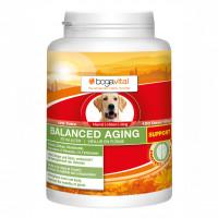 bogavital BALANCED AGING SUPPORT Hund, 120 ST, Werner Schmidt Pharma GmbH