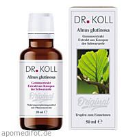 Gemmoextrakt Schwarzerle - Alnus Glutinosa, 50 ML, Dr. Koll Biopharm GmbH