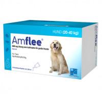 AMFLEE 268 mg Spot-on Lsg.f.große Hunde 20-40kg, 6 ST, TAD Pharma GmbH