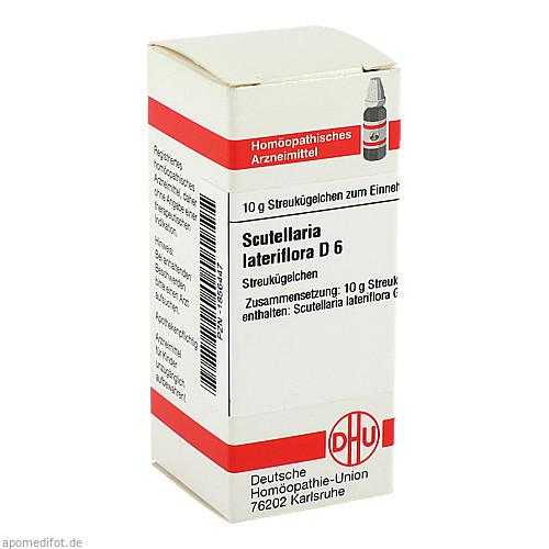 Scutellaria lateriflora D6, 10 G, Dhu-Arzneimittel GmbH & Co. KG