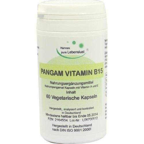 PANGAM Vitamin B15 Kapseln, 60 ST, G & M Naturwaren Import GmbH & Co. KG