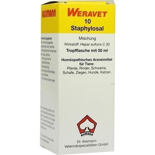 STAPHYLOSAL 10 Tropfen vet., 50 ML, Biokanol Pharma GmbH