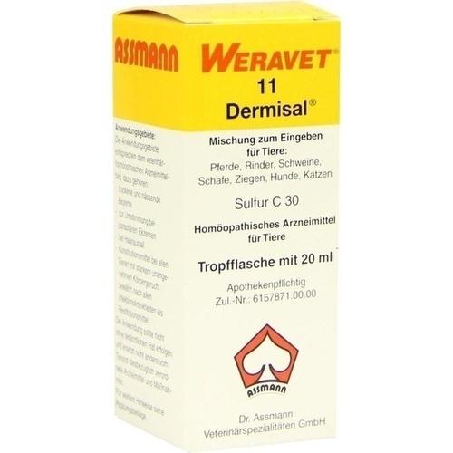 DERMISAL 11 Tropfen vet., 20 ML, Biokanol Pharma GmbH