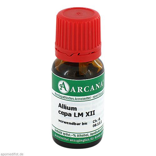 ALLIUM CEPA ARCA LM 12, 10 ML, Arcana Arzneimittel-Herstellung Dr. Sewerin GmbH & Co. KG