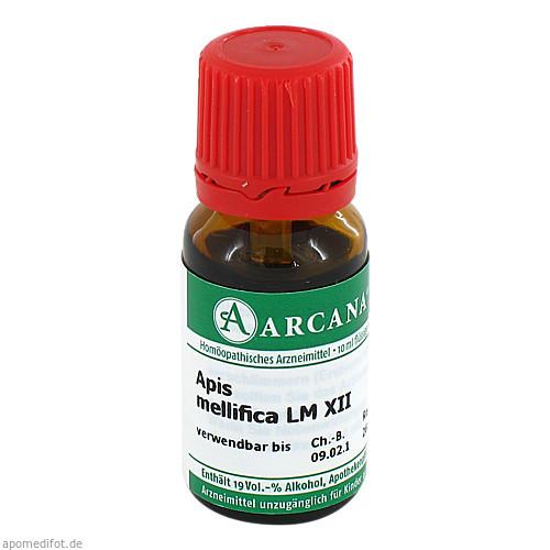 APIS MELLIFICA ARCA LM 12, 10 ML, Arcana Arzneimittel-Herstellung Dr. Sewerin GmbH & Co. KG