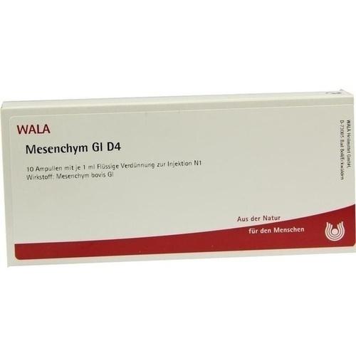MESENCHYM GL D 4, 10X1 ML, Wala Heilmittel GmbH