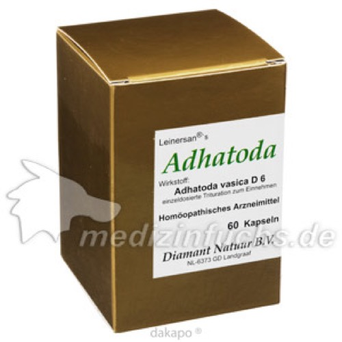 Adhatoda, 60 ST, Diamant Natuur B.V.