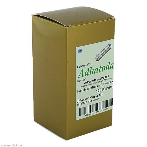 Adhatoda, 120 ST, Diamant Natuur B.V.
