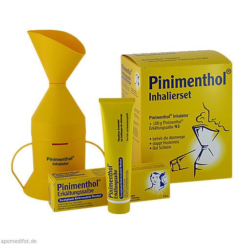 Pinimenthol Inhalierset 100G, 1 ST, Dr.Willmar Schwabe GmbH & Co. KG