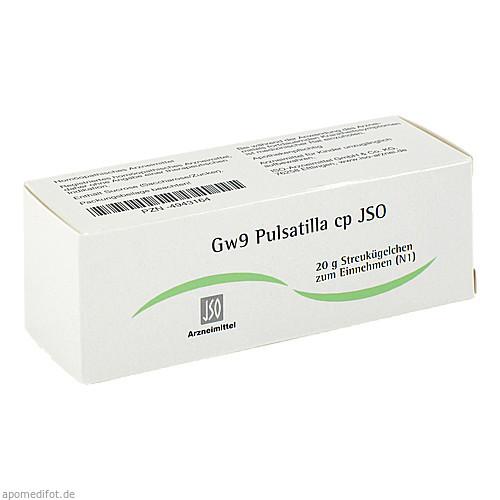 Gw9 Pulsatilla cp JSO, 20 G, Iso-Arzneimittel GmbH & Co. KG