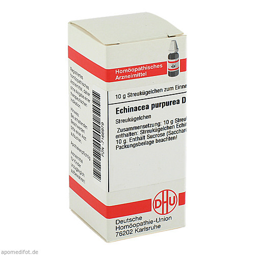 ECHINACEA PURPUR D 6, 10 G, Dhu-Arzneimittel GmbH & Co. KG