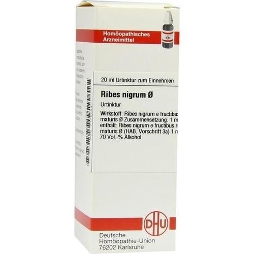 RIBES NIGRUM URT, 20 ML, Dhu-Arzneimittel GmbH & Co. KG