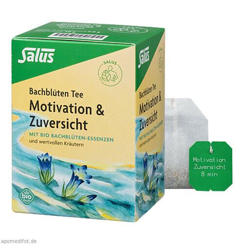 Bachblüten Tee Motivation & Zuversicht bio Salus, 15 ST, Salus Pharma GmbH