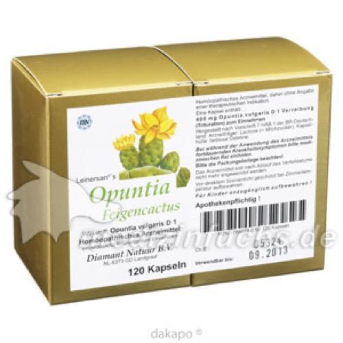 Opuntia Feigencactus, 120 ST, Diamant Natuur GmbH