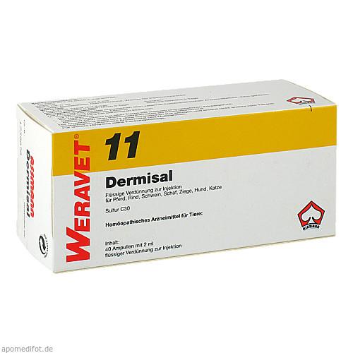 DERMISAL 11 Ampullen vet., 4X10X2 ML, Biokanol Pharma GmbH