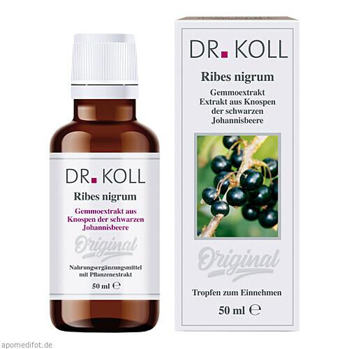 Gemmoextrakt Schwarze Johannisbeere, 50 ML, Dr. Koll Biopharm GmbH
