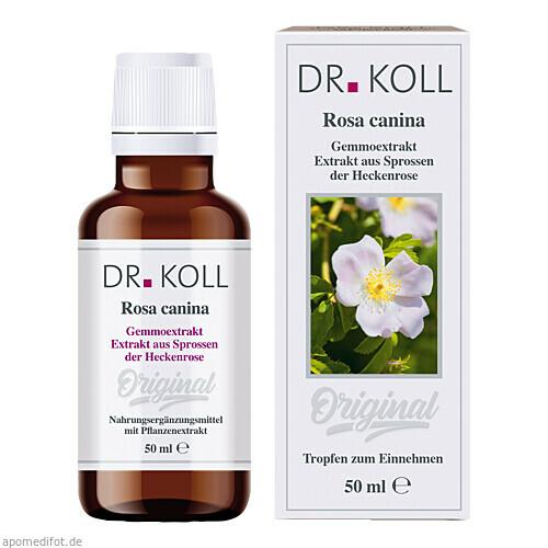 Gemmoextrakt Heckenrose, 50 ML, Dr. Koll Biopharm GmbH