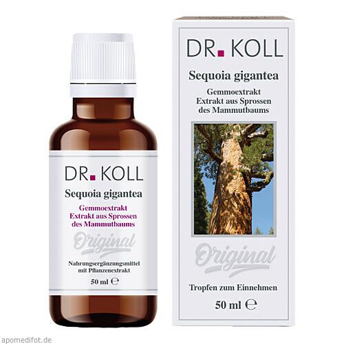 Gemmoextrakt Mammutbaum, 50 ML, Dr. Koll Biopharm GmbH