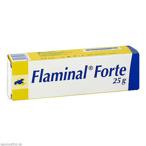 FLAMINAL FORTE ENZYM ALGINOGEL, 25 G, Flen Health GmbH