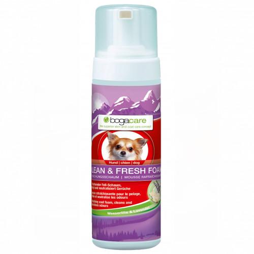bogacare CLEAN & FRESH FOAM Hund, 150 ML, Werner Schmidt Pharma GmbH