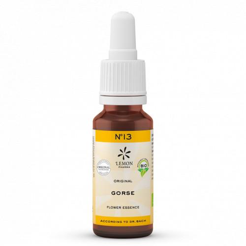 BACHBLUETE 13 GORSE BIO, 20 ML, Lemon Pharma GmbH & Co. KG