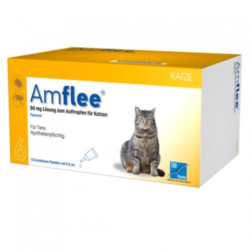 AMFLEE 50 mg Spot-on Lösung z.Auftropfen f.Katzen, 6 ST, TAD Pharma GmbH