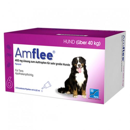 AMFLEE 402 mg Spot-on Lsg.f.sehr gr.Hunde 40-60kg, 6 ST, TAD Pharma GmbH