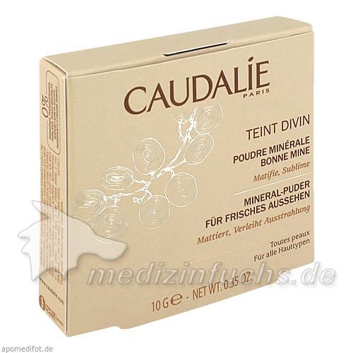 Caudalie teint divin mineral-puder für frisches aussehen, 10 g,